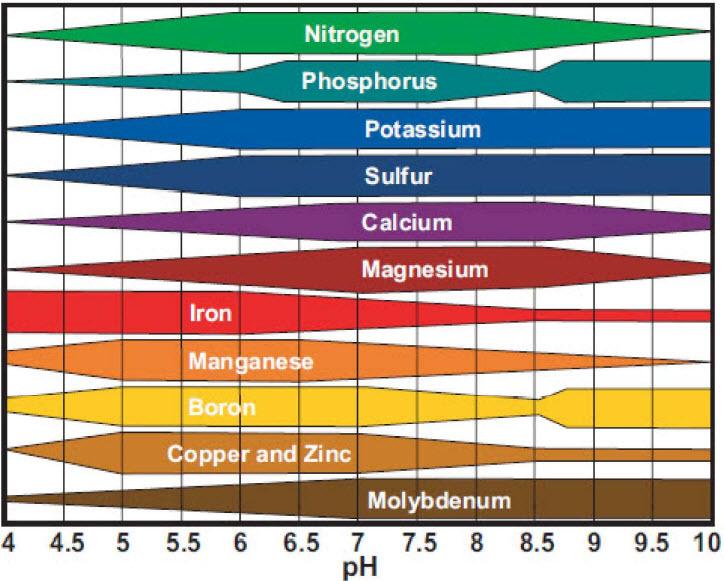 pH'a göre element emilimi
