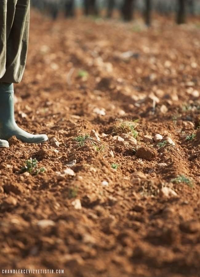 kahverengi toprak ve çiftçi