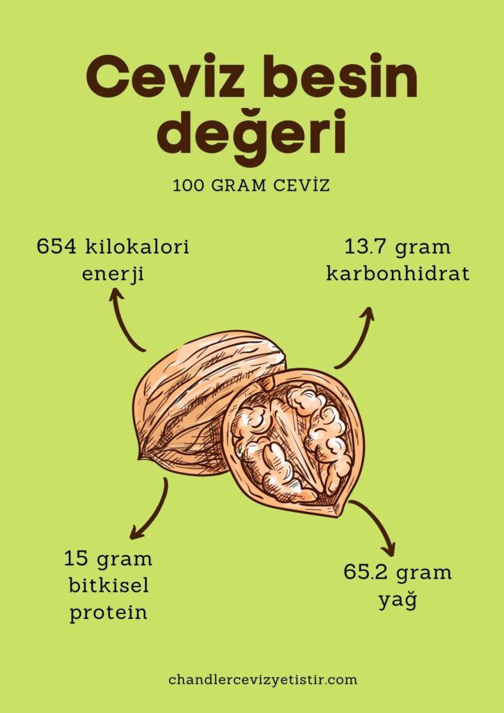 ceviz besin değeri kartı enerji yağ karbonhidrat protein değerleri